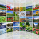 Circular Wall Photo Gallery - GraphicRiver Item for Sale