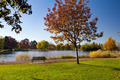 Empty Park Bench by Lake in Fall - PhotoDune Item for Sale