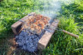 Barbecue with delicious grilled meat on grill - PhotoDune Item for Sale