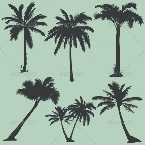 GraphicRiver Vector Set of Palms Silhouettes 6053632