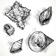 Set of Shell Sketches - GraphicRiver Item for Sale