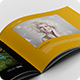 Portfolio Brochure 001 - GraphicRiver Item for Sale