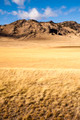 Yellow Grain Grassland Growing Scenic Valley Northern Rocky Mountains - PhotoDune Item for Sale