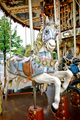 Merry Go Round Amusement Ride Old Carousel Horse - PhotoDune Item for Sale