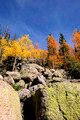 Fall in Colorado - PhotoDune Item for Sale