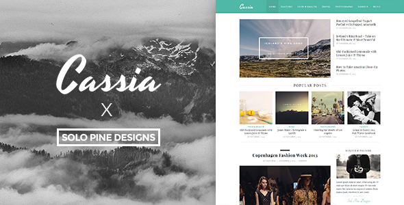 ThemeForest Cassia A Responsive WordPress Blog Theme 6088272