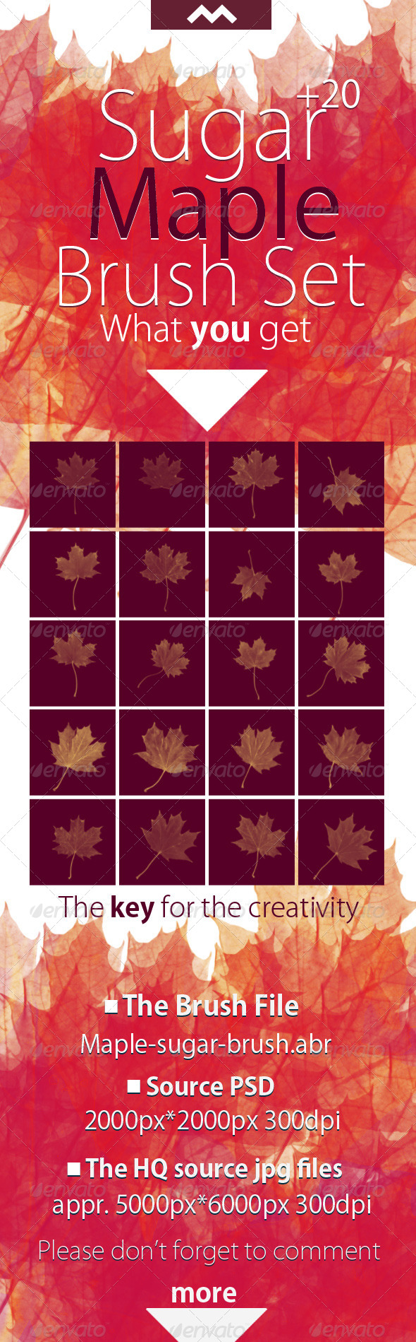 GraphicRiver Sugar Maple Brush With the 20 HQ Leaf Source 6094772