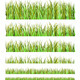 Grass Collection - GraphicRiver Item for Sale