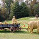 Straw Animals With Wagon - PhotoDune Item for Sale