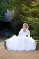 Bride Sitting on a Wooden Bench - PhotoDune Item for Sale