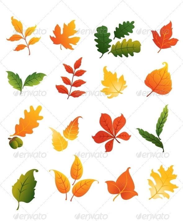 GraphicRiver Colourful Autumnal Leaves Set 6126936