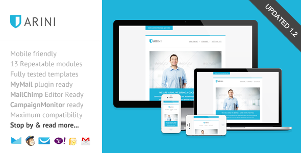 Arini, Clean Business Newsletter Template - Newsletters Email Templates