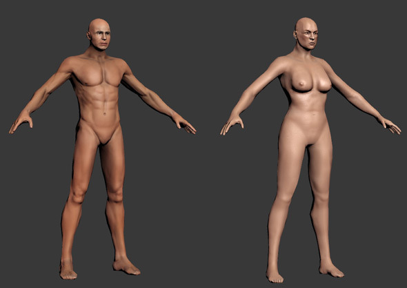3DOcean Human Male and Female base mesh rigged 6139401
