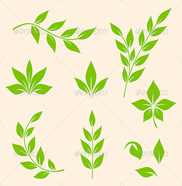 GraphicRiver Green Leaves 6141693