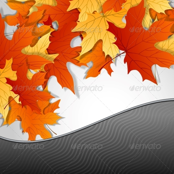 GraphicRiver Autumn Leaves Background 6143953