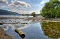 Log on the shore of Coniston Water - PhotoDune Item for Sale