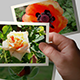 Handing Out Photo Gallery - VideoHive Item for Sale