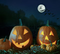 Night scene with Halloween pumpkins and moom - PhotoDune Item for Sale