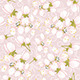 Cherry Blossoms  - GraphicRiver Item for Sale