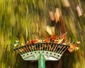 Motion blur on green lawn rake leaves - PhotoDune Item for Sale