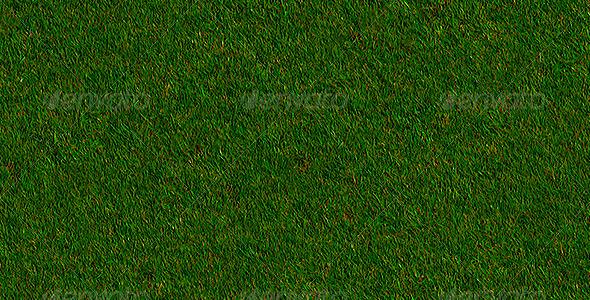 3DOcean Realistic Autumn Grass 6160786