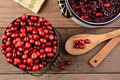 Making Cranberry Sauce for Thanksgiving - PhotoDune Item for Sale