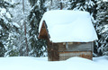 Wooden shed in winter fir forest - PhotoDune Item for Sale