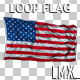 USA Loop Flag - VideoHive Item for Sale
