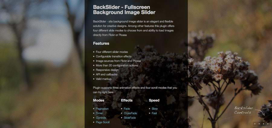 Backslider - Fullscreen Background Image Slider - Pagination mode