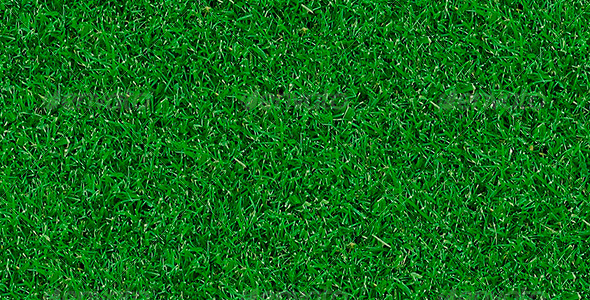 3DOcean Realistic Tileable Grass 6160759