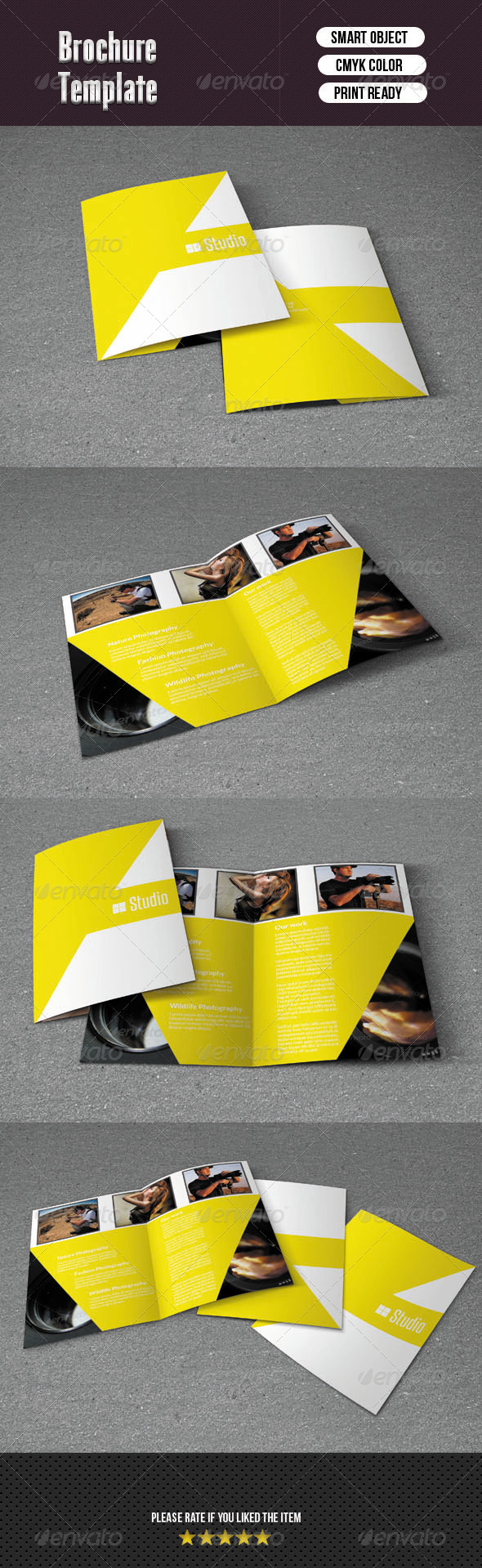 GraphicRiver Bifold Brochure-Studio 6189839