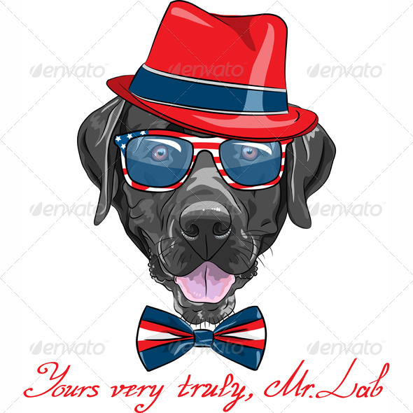 GraphicRiver Vector Hipster Dog Labrador Retriever 6193681