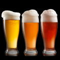 Different beer in glasses isolated on white background - PhotoDune Item for Sale