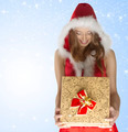 happy sexy christmas girl holding gift box - PhotoDune Item for Sale