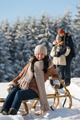 Young woman sitting winter wooden sledge - PhotoDune Item for Sale