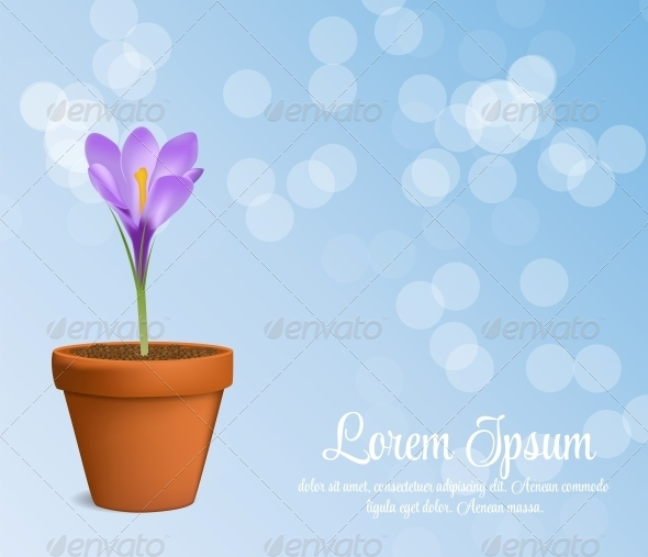 GraphicRiver Vector Illustration of Crocus Flower 6219651