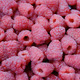Background raspberry - PhotoDune Item for Sale