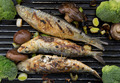 Grilled sardines - PhotoDune Item for Sale