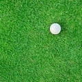 Golf Ball on the Grass for web background - PhotoDune Item for Sale