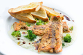 Lightly fried salmon with herb sauce - PhotoDune Item for Sale