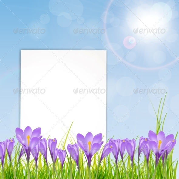 GraphicRiver Vector Illustration of Crocus Flower 6241207