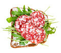 sandwich from bread, cheese, salami and arugula - PhotoDune Item for Sale
