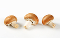 Fresh brown mushrooms - studio shot - PhotoDune Item for Sale