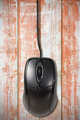Computer mouse on the old wooden planks - PhotoDune Item for Sale