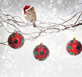 Christmas balls and sparrow bird with Santa Claus hat on snowy branch - PhotoDune Item for Sale