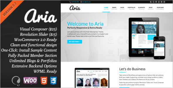 Aria - Pure Business Theme - Corporate WordPress