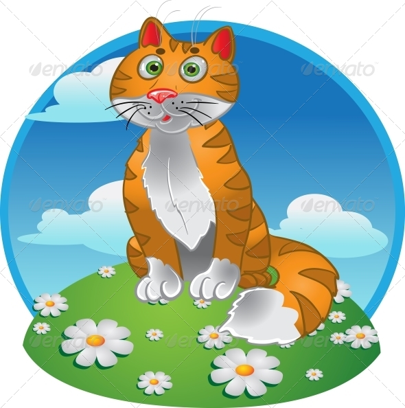 GraphicRiver Orange Funny Sitting Cat on Color Background 6265556