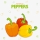 Peppers Sweet - GraphicRiver Item for Sale