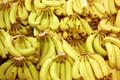 Bananas - PhotoDune Item for Sale