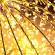 Bokeh defocused gold abstract christmas background - PhotoDune Item for Sale